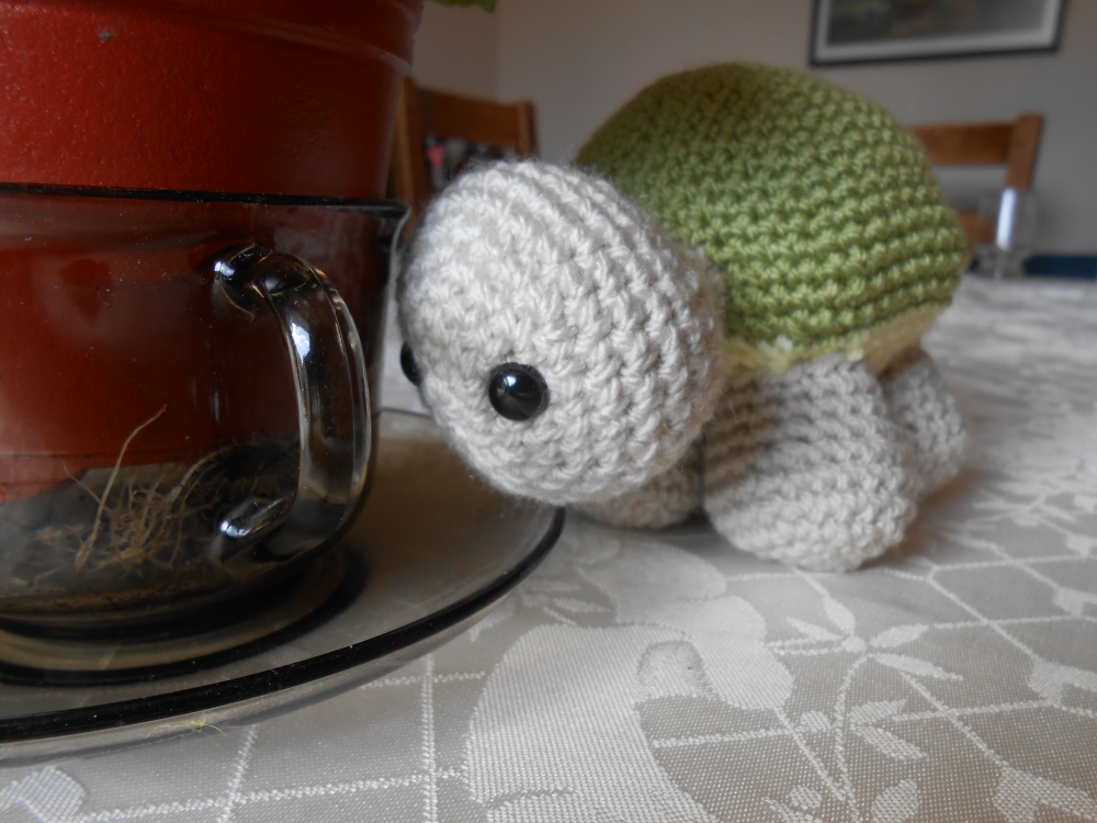 Timmy the Turtle (4/6)